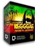 45reggae1