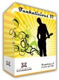 74funk_guitar1