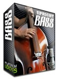 upright bass loops